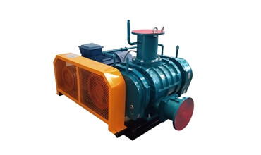 Roots Type Vacuum Pump